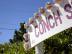 Conch Crack at Da Conch Shack – Providenciales